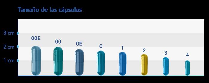 Size-Chart-v1